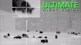 45 Hogs Down | Hog Hunting with the Pulsar Trail XP38 and XP50 Thermal Scopes