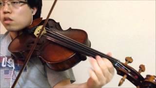 Repeat youtube video Fiesta - Fairy Tail OP 6 (+Plus) - Viola Cover