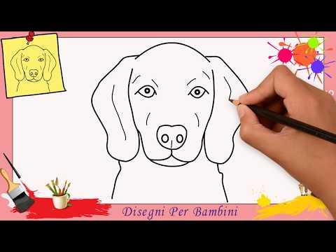 Come Disegnare Un Cane Facile Passo Per Passo Per Bambini Disegno