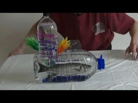 Diy Aquarium With Inverted Tower & Fish For Under £2 How To Make A Bottle Aquarium