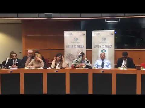 Kaoutar Fal promoting Morocco at the Globe's Forum- Eu Parliament