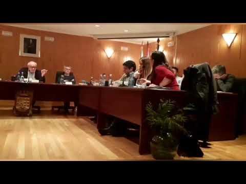 Un pleno bronco en Sarria acaba con la expulsión de la exalcaldesa