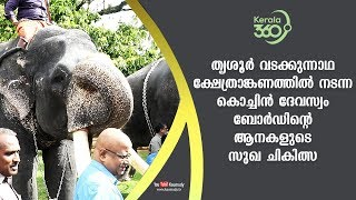 Treatment of Cochin Devaswom Board elephants at Thrissur Vadakkumnadha temple | #Kerala360
