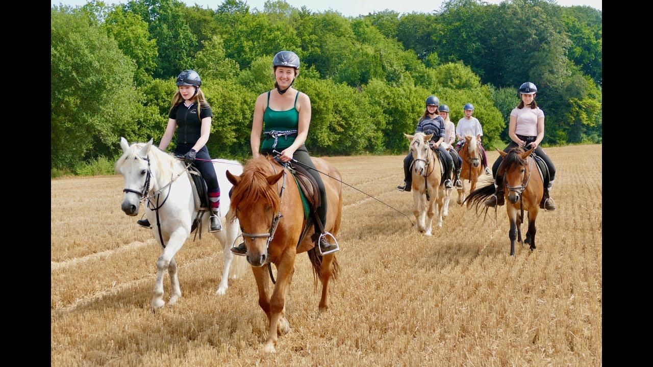 Reiterferien auf der Märchenmühle