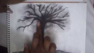 HOW TO DRAW A TREE WITH CHARCOAL PART 2