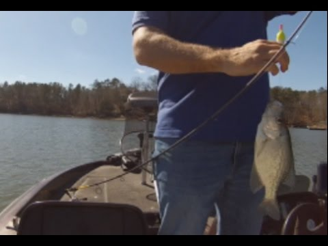 Best times to crappie fish late winter early spring for Best crappie fishing times