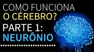 Como funciona o cérebro? | Parte 1: Neurônios | PEDRO CALABREZ | NeuroVox 009