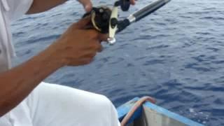 Mancing Ikan Tenggiri di Sadai Toboali Bangka Selatan