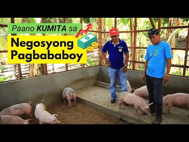 Paano Kumita sa Pag-aalaga ng Palakihing Baboy