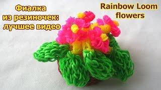 Rainbow Loom flowers. Фиалка из резиночек: лучшее видео