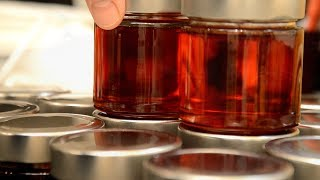 How to Make Perfect Apple Jelly at Home