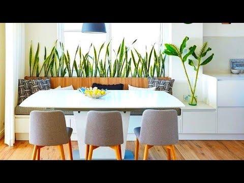 Как Цветы и Комнатные Растения Преображают Интерьер