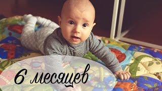 Развитие ребенка в 6 месяцев - МНОГО МИШУТКИ. - Ollysadvice