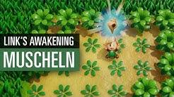 The Legend of Zelda: Link's Awakening | GUIDE | So findet ihr alle Zaubermuscheln