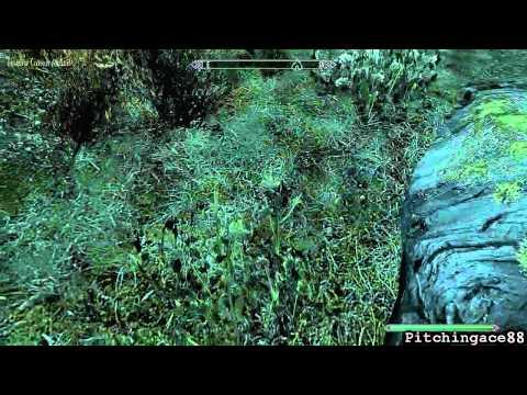 Skyrim Shennanagins [HD] - Swimming Elk + Flying Mammoth