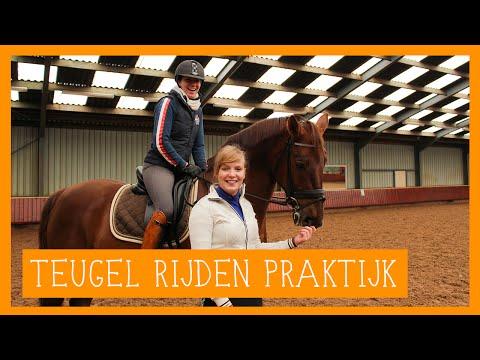 Aan de teugel rijden praktijk   PaardenpraatTV