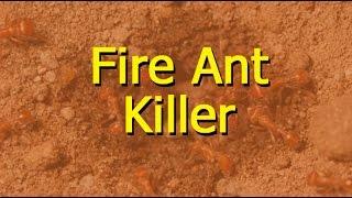 Fire Ant Killer