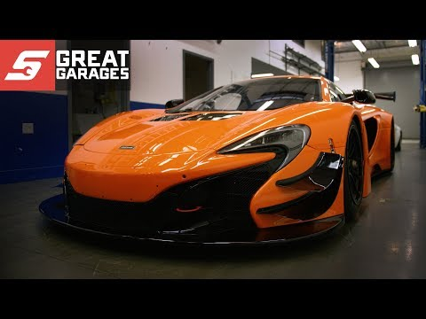 FLYING LIZARD  Snapon Great Garages™