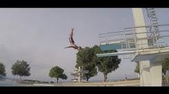 11 Arten von Turmspringern | LeeMaTV