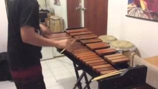 Testing Adams Academy Series Xylophone