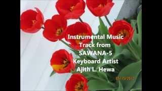 Amaradeva song Aradhana - Instrumental Tribute from CyberSawana.wmv