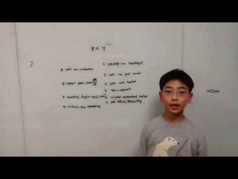 Ethos-Ray-Debate-AssessmentAssertion-Robert