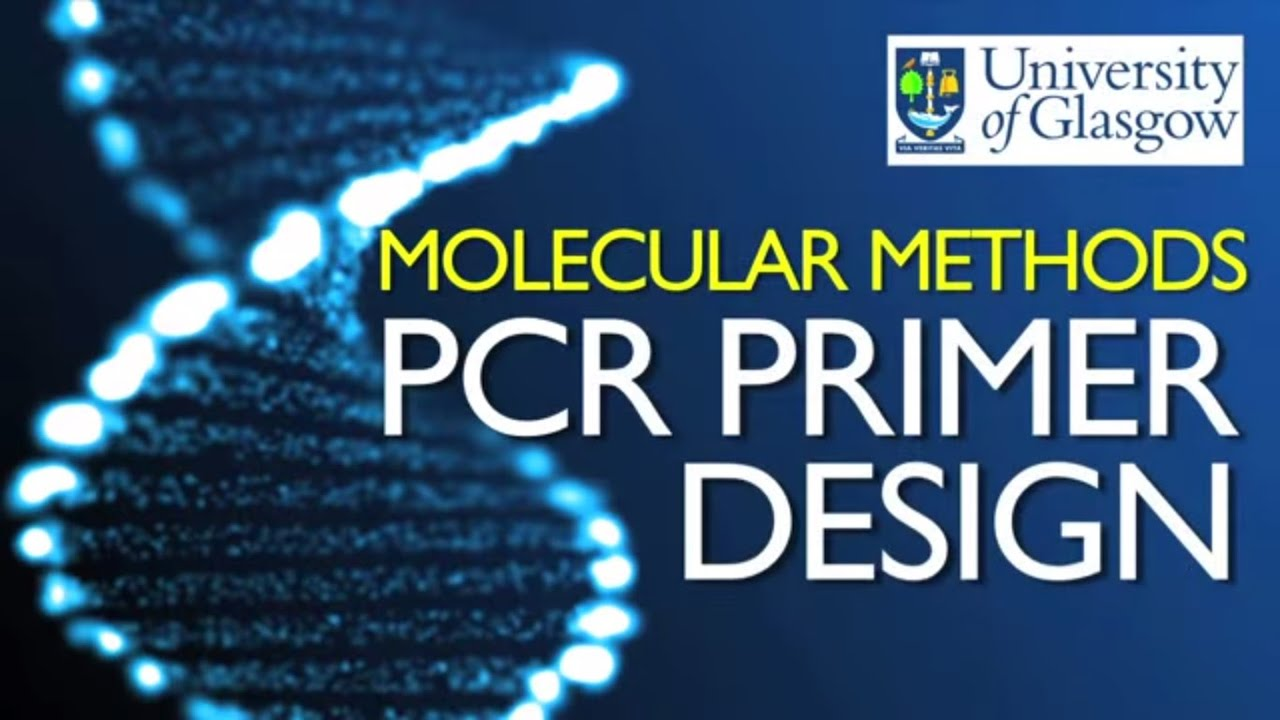 PCR | Polymerase Chain Reaction