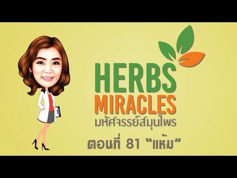 """มหัศจรรย์สมุนไพร(Herbs Miracles) Season2 ตอนที่81 """"แห้ม"""""""