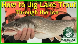 How to Jig Lake Trout Through the Ice - Ice Fishing Lake George