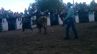 Fiestas del sauz de ures  2015