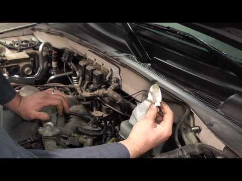 Car Maintenance & Repair Tips-How to Check Your Fluids- East Lansing Michigan