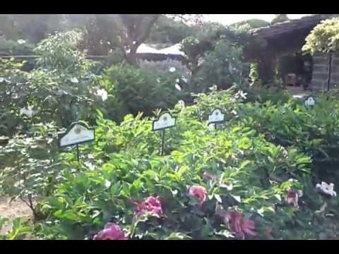 I giardini di