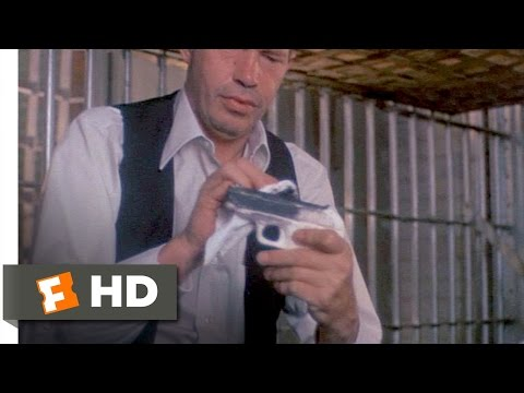 Dillinger (8/12) Movie CLIP - Break Out, Baby! (1973) HD