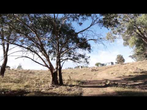 The Journey so Far - Amaroo Local Aboriginal Land Council