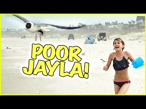 🌴 JAYLA GETS A BUCKET OF WATER TOSSED ON HER 🌴 IT'S SPRING BREAK! 🌴 VLOGMANIA 🌴 SMELLY BELLY TV