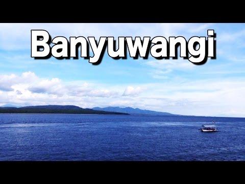 Indonesien #019: Weiter nach Banyuwangi ins Bangsring Breeze
