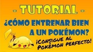 Tutorial: cómo entrenar bien a un Pokémon - Guía de IV's y EV's