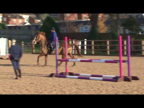 British Showjumping - Training for those returning to affiliated showjumping Part 4