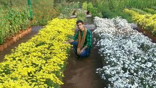 Sonari swathi song st
