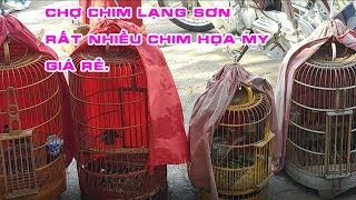 Ask MY bird price at Lang Son Xuan Market