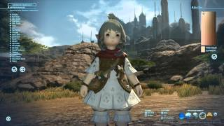 Video Gameplay Final Fantasy XIV Online: A Realm Reborn [PC] - Benchmark Character