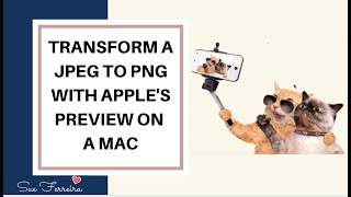 Gambar cover How to transform a jpeg to png using Apple's Preview on a Mac