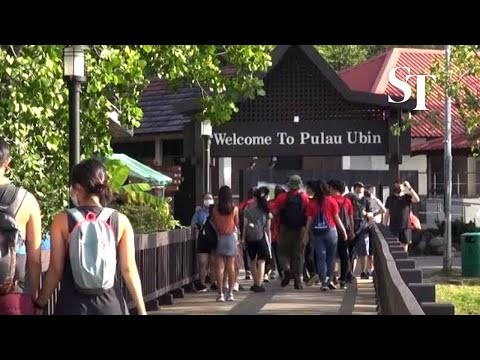 Hot getaway: Visitors flock to Pulau Ubin thumbnail