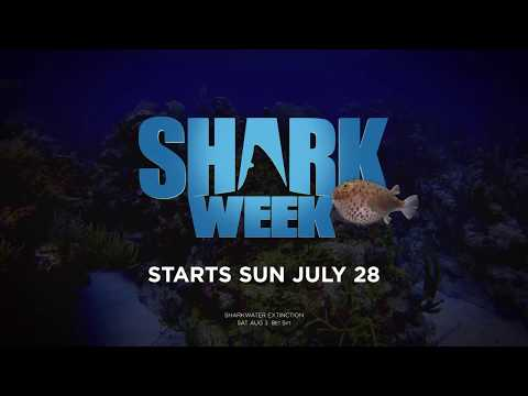Off The Air: Jammin' Jessie - Shark Week 2019 Schedule is Out!!!