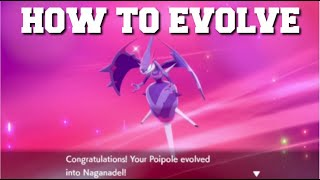 HOW TO EVOLVE ṖOIPOLE INTO NAGANADEL IN POKEMON SWORD AND SHIELD CROWN TUNDRA DLC!