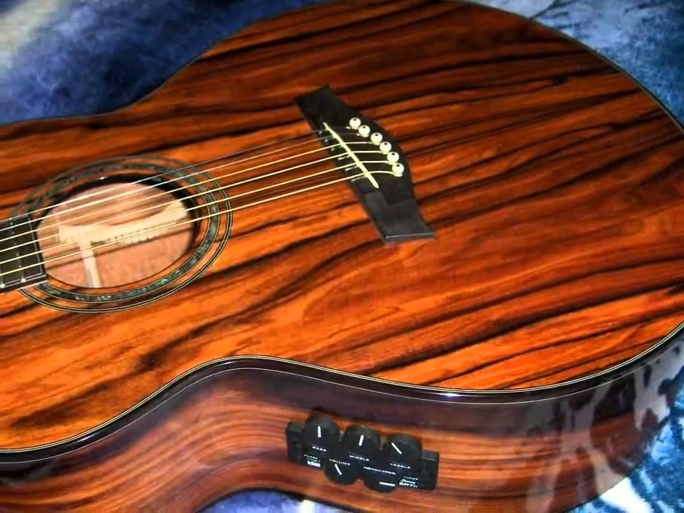 Ibanez Exotic Wood Series Acoustic Guitar