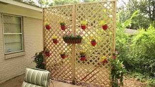 Diy Lattice Privacy Wall
