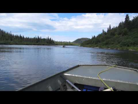 Brown Bear Sighting - Copper River - Newhalen Lodge