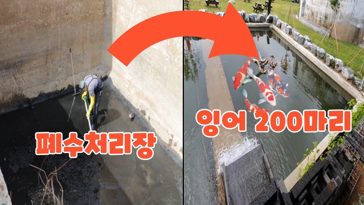 40년 방치된 폐수처리장이 연못으로 바뀌는 과정(4k/잉어,연못여과장치)