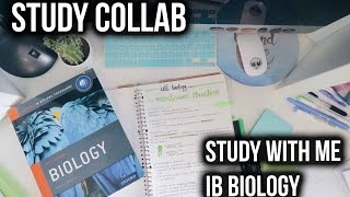 biology study sheet for ib students How do you study for ib english sl/hl read our set of ib english notes and our free study guide for the best resources available find this pin and more on ap bio by ral8415 the best ib biology study guide and notes for sl/hl.